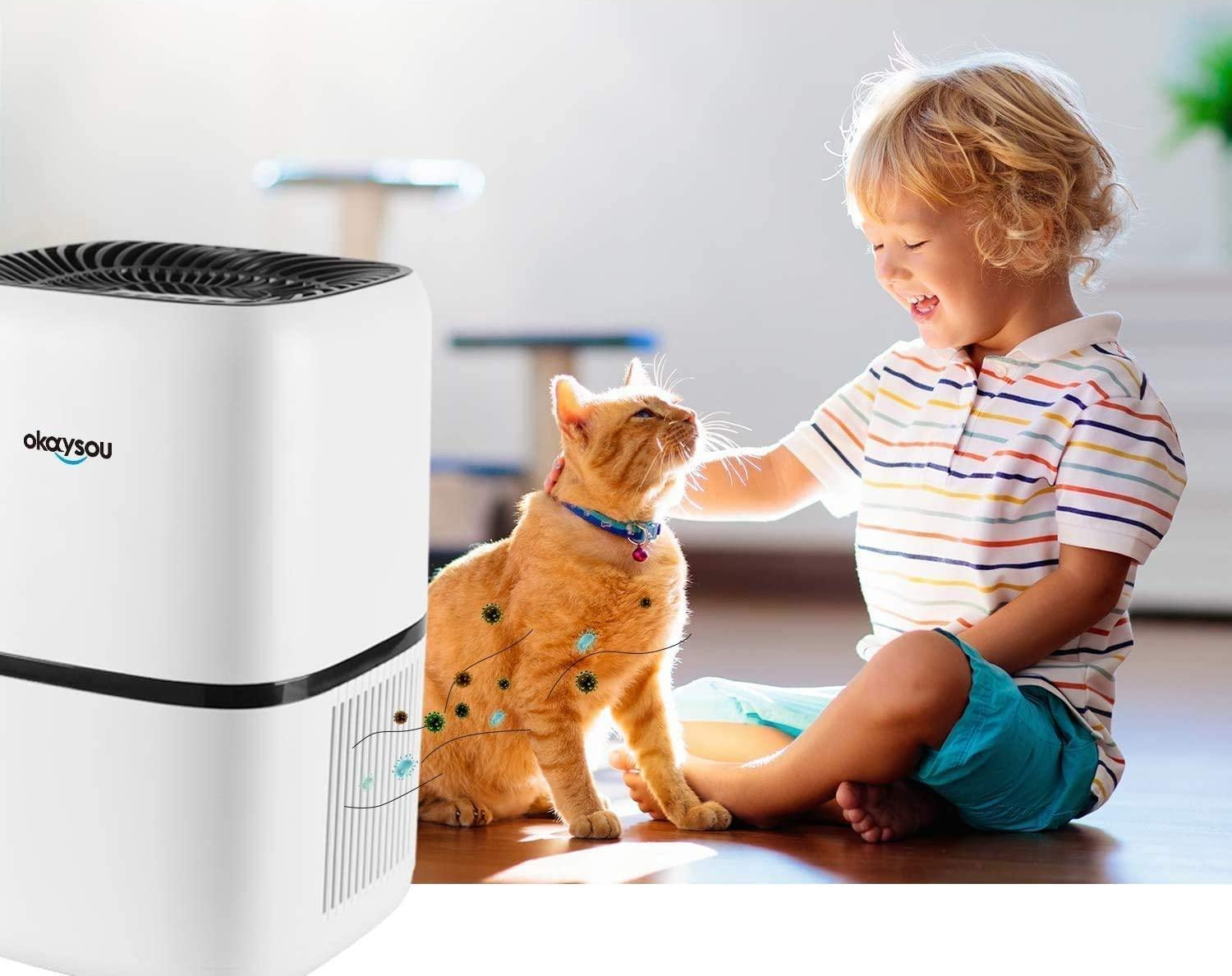 3 Okaysou Air Purifiers Review: You Sure Gonna Like it.