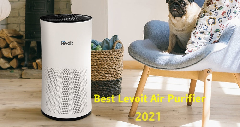 Best Levoit Air Purifier for 2021 (11 Models Compared)