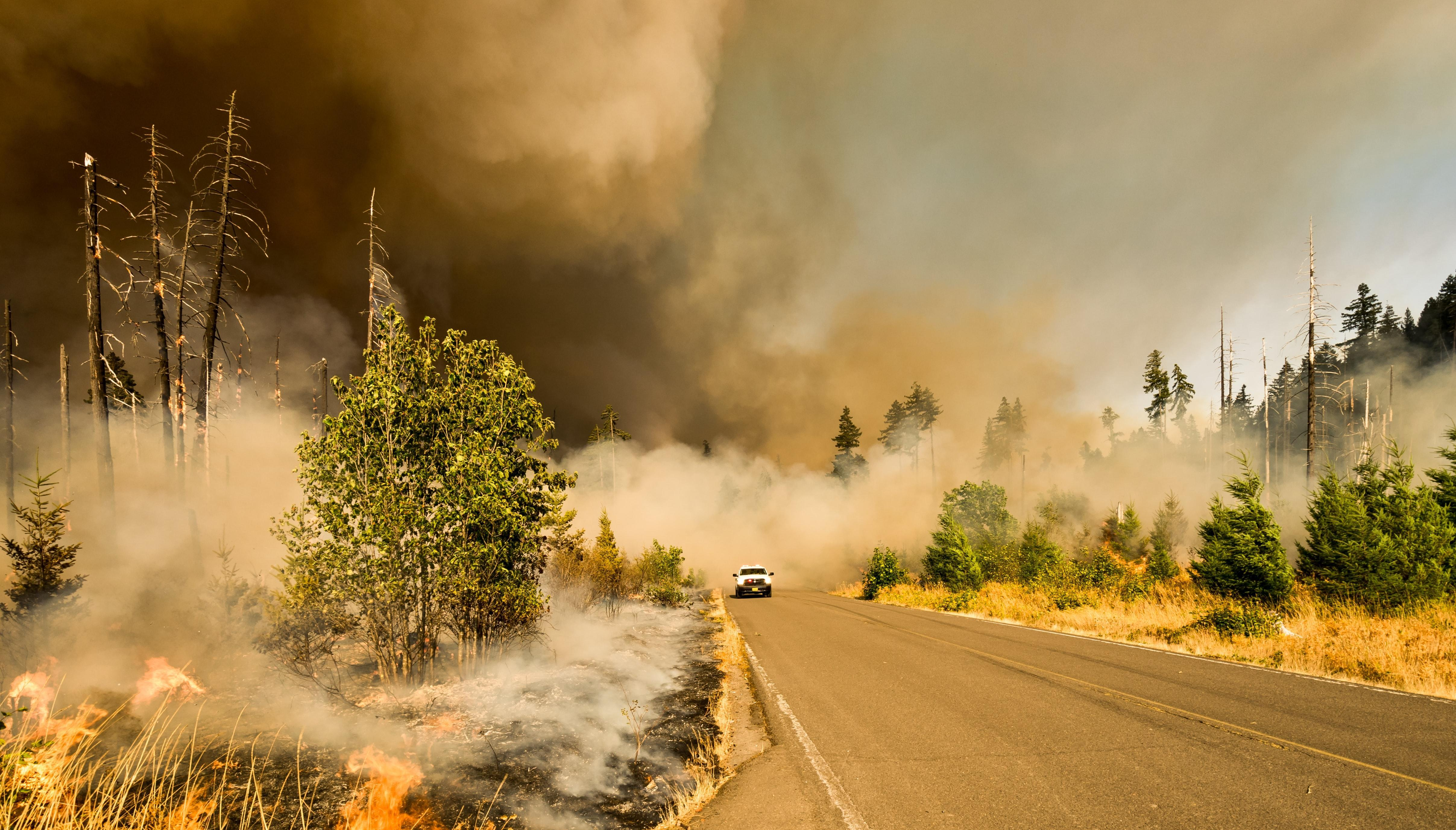 5 Best Air Purifiers for Wildfire Smoke in 2021